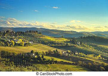 italy, chianti, tuscany, 葡萄園, 全景, panzano, sunset.
