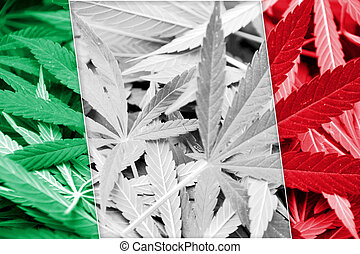 Italy Flag on cannabis background. Drug policy. Legalization...