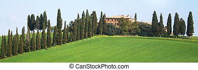 Italy. Tuscany region, Val D\'Orcia valley - Italy. Spring...