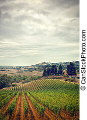 Italy,Tuscany in Autumn, stormy clouds  sky and vineyard