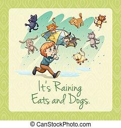 It's raining cats and dogs idiom illustration