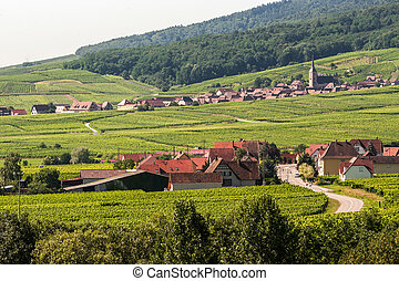 Itterswiller (Alsace) - Panorama - Panoramic view from...