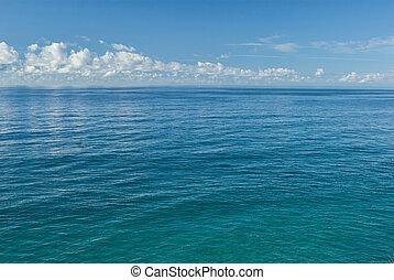 ivrig, blå ocean