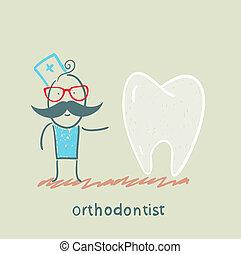ivrig, orthodontist, tänder