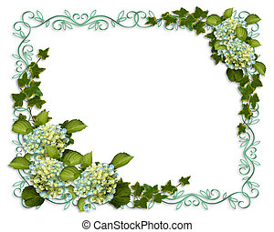 Ivy, Hydrangea flowers image and illustration composition for background, border, frame, wedding invitation or template with copy space.