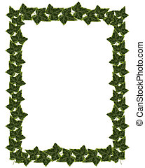 Ivy Border or Frame design