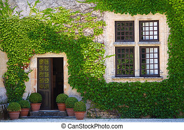 Ivy clad wall - Ivy clad house photographed in the Dordogne...