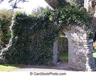 Ivy covered arch