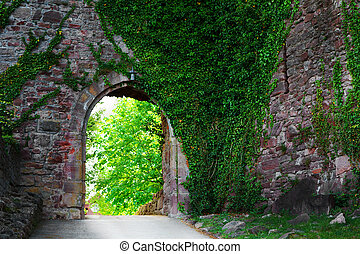 Ivy covered wall on a narrow medieval street