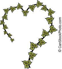 Ivy heart hand drawn