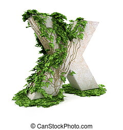 Ivy letter X isolated on white background.