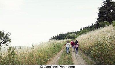 izbogis, nature., kilátás, fenék, futás, csoport, elgáncsol,...