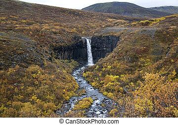 izland, vízesés, -, svartifoss
