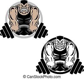 izom, íme, weightlifting, tornaterem, állóképesség