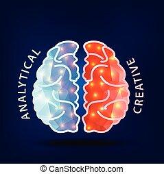izquierda, hemisferio, idea., cerebro, creativo, derecho, ...