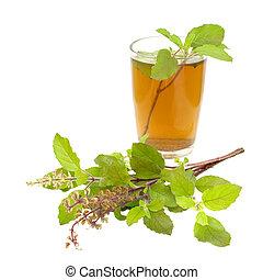 jámbor, tea, ayurvedic, tulsi, orvoslás, bazsalikom