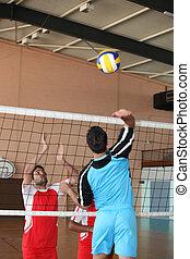 játékosok, volley-ball