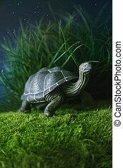 játékszer, tengeri teknős, gyalogló, képben látható, fű