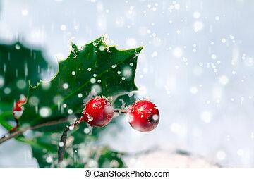 järnek, jul, bakgrund, festlig