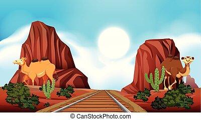 järnväg, genom, den, öken