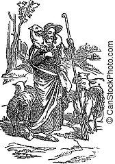 jésus, tenue, bible, dessin, sur, berger, biblique, testament, homme, sheep., john, sien, histoire, bon, vendange, soins, nouveau, 10