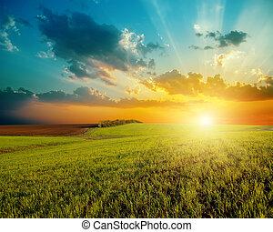 jó, napnyugta, és, zöld, mezőgazdaság terep