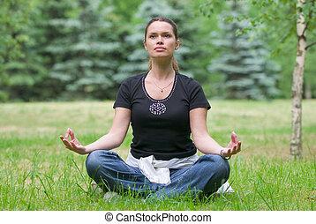 jóga, szórakozási, gyakorlás, alatt, egy, liget