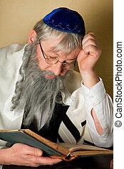 jüdisch, lesend buch