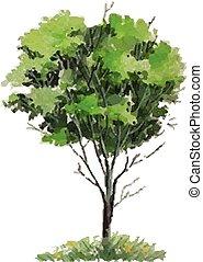 jaargetijden, vector, -, boompje
