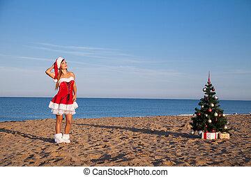 jaarwisseling, kerstboom, zet op het strand toevlucht, zee, meisje