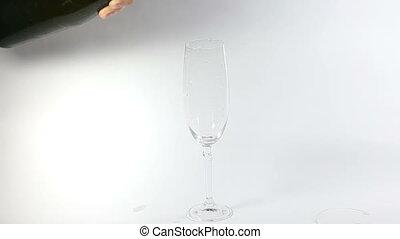 jabłecznik, fałdzisty, do, przedimek określony przed rzeczownikami, szkło