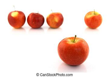 jabłko, ochotnik