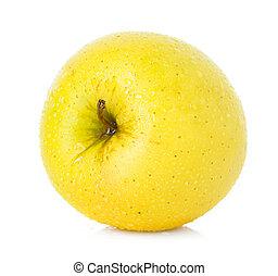 jabłko złotego