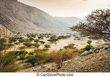 Jabal Jais mountain and desert landscape near Ras al Khaimah