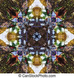 jacana abstract 1
