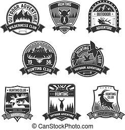 jacht, club, avontuur, vector, iconen, of, kentekens, set