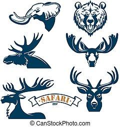 jacht, club, vector, iconen, set, van, dieren
