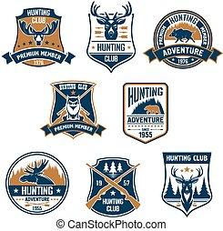 jacht, sportende, club, iconen, en, emblems