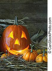 Jack-o-lantern lit for halloween - Carved jack-o-lantern lit...