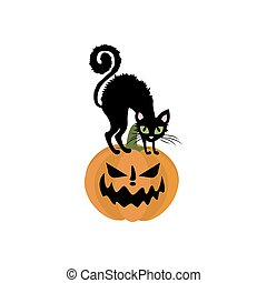 Jack-o-lantern pumpkin and cat