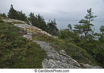 Jack Pine Trail, Cape Breton Highlands Nat Park, Nova...