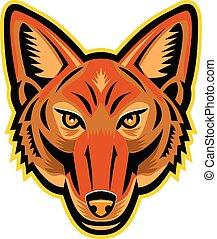 jackal-frnt-HEAD-MASCOT - Mascot icon illustration of head...