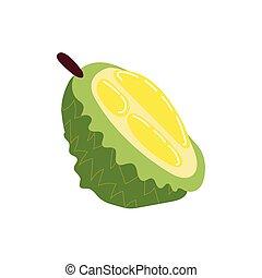 jackfruit exotic fruit flat style icon vector illustration ...