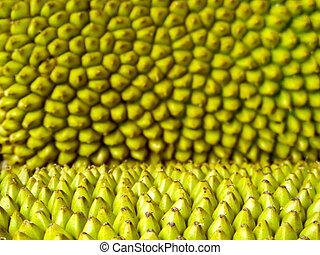 jackfruit thorn surface blur texture background