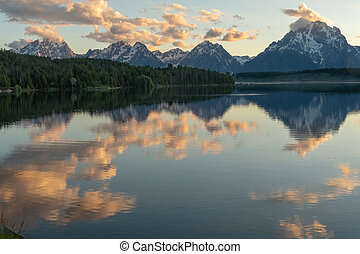 Jackson Lake Reflects clouds with pine Trees and Tetons