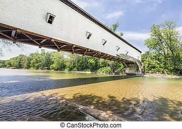 jackson, pont, dans, parke, comté