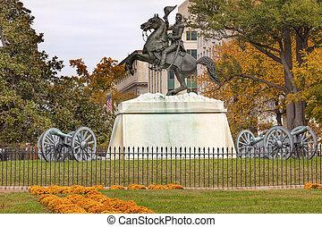 Jackson Statue Canons Lafayette Park Autumn Pennsylvania Ave Was