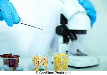 jadło, asystent, jakość, laboratorium