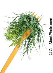 jadło, trawa, zdrowy