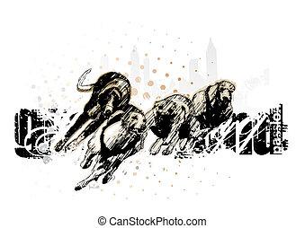 jagdhund, rennsport, grau